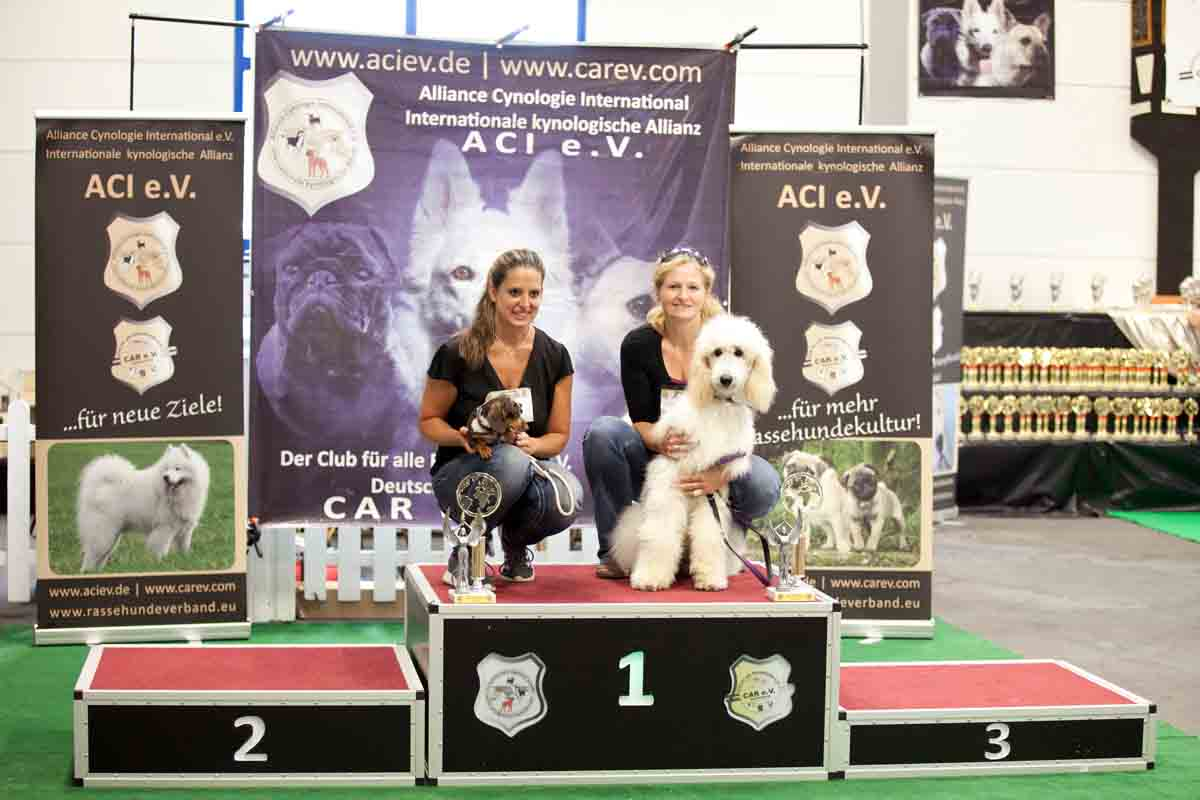Best of Breed Kleinrassen