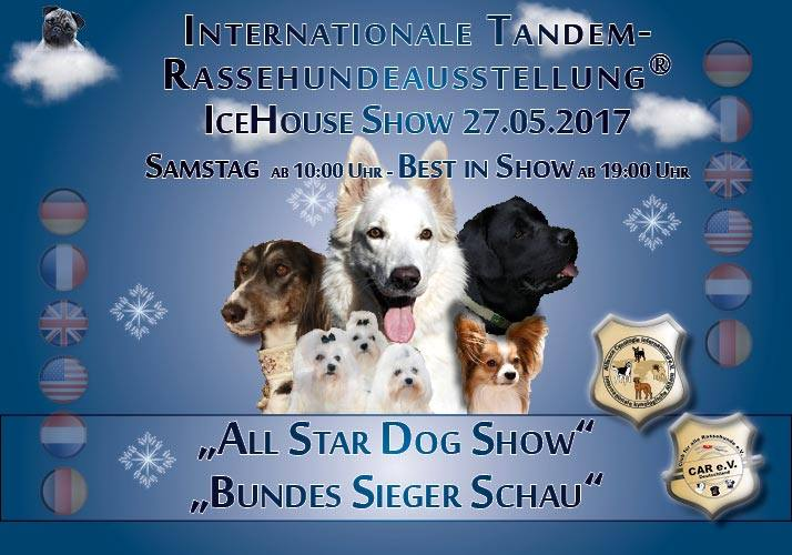 ALL STAR DOG SHOW - BUNDES SIEGER SCHAU 2017